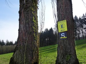 Wegezeichen Eggetaler Panoramaweg