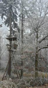 Hochsitz mit vereisten Bäumen am Rheinburgenweg Etappe 7
