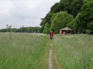 Schutzhütte am Hermannsweg Etappe 3