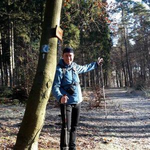 Eher breite Wanderwege erwarten uns auf der Rheinsteig Etappe 10. Doch auch auf ihnen liegt ein eisiger Winterzauber.