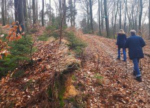 Endspurt auf dem Waldlehrpfad Dammer Berge
