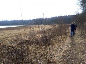 Weg am Dammer Bergsee