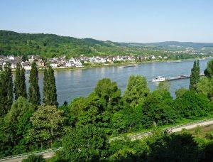 Blick auf den Rhein vom Zecherweg