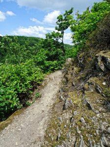 Weniger Schatten aber auch umso mehr Ausblicke gibt der Weg nun frei.