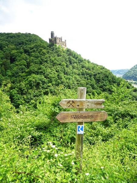 Zunächst führt uns der Rheinsteig bergab ins Tal Richtung Wellmich.