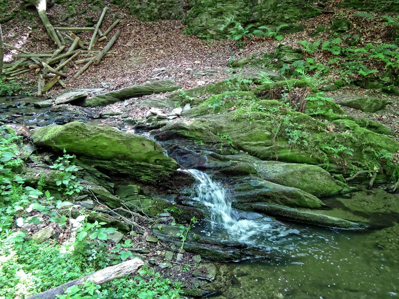Leise plätschert das Wssaer am Wegesrand im Urbachtal.