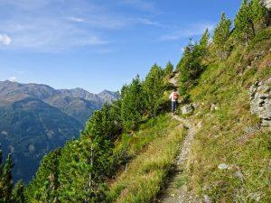 Am Hang entlang und immer weiter aufwärts führt unser Weg zum Gritzer Hörndl.