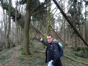 Umgestürzte Bäume auf dem wanderweg A4
