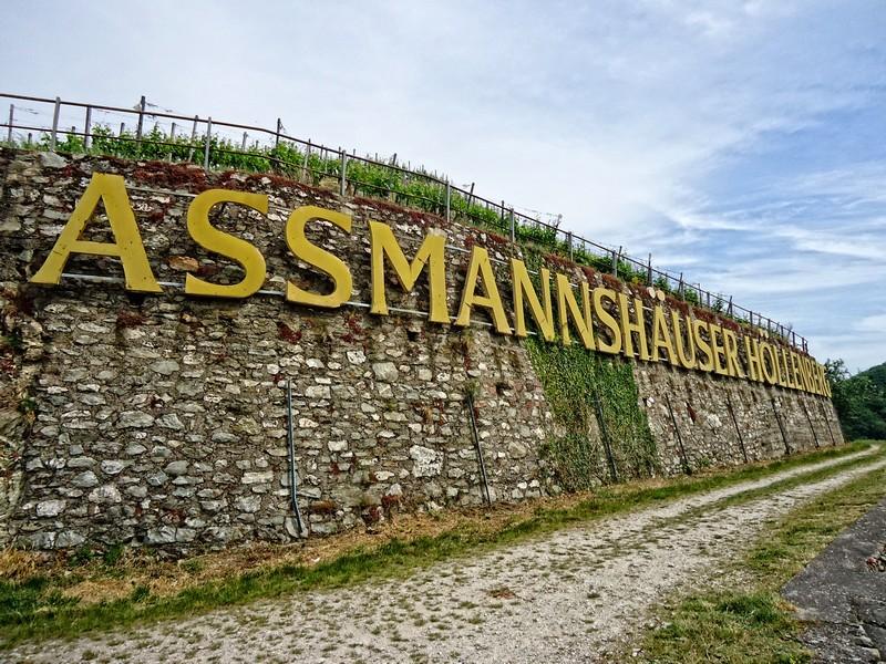 Asmannhauser Höllenberg