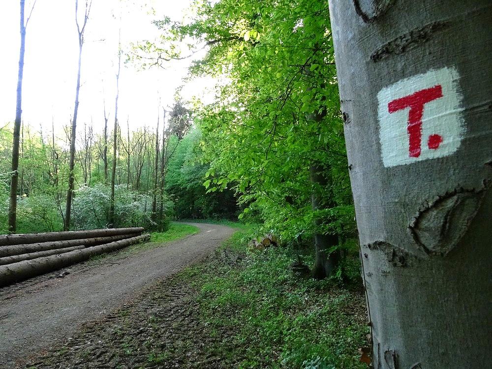 Wegezeichen Terra.track