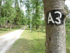 Gut markiert präsentiert sich der Rundwanderweg A3 in der Wistinghauser Senne.