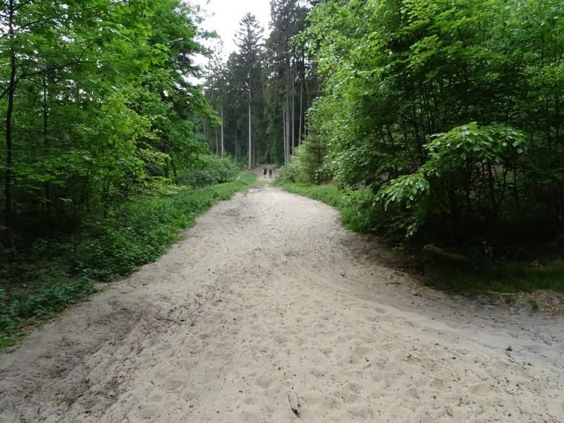 Laufen wie am Beach - glücklicherweise ist der Sennesand nicht auf dem gesamten Weg unser Untergrund. Auf Dauer würde das anstrengend werden...