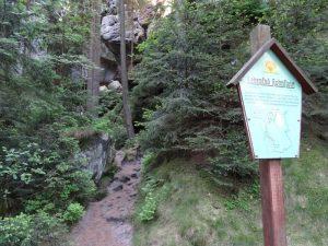 Der Lehrpfad Hohnstein begleitet uns ein Stück des Weges.