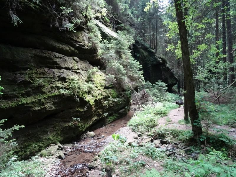 Wildromantisch und mit mystischer Stimmung nimmt uns die Klamm des Kohlichtgrabens in Empfang.