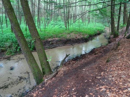 Ganz nah am Furlbach verläuft unser Wanderweg mitunter.