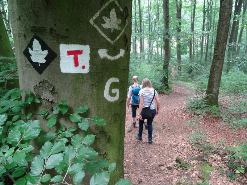 Das rote T auf weißem Grund leitet uns über den Terra.track Achter de Welt bei Hagen.