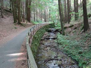 Der Dorfbach hat uns bis hierher über weite Strecken begleitet.