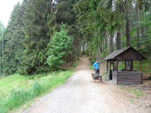 Kurzer Regenstopp an der Schutzhütte am Waldrand.