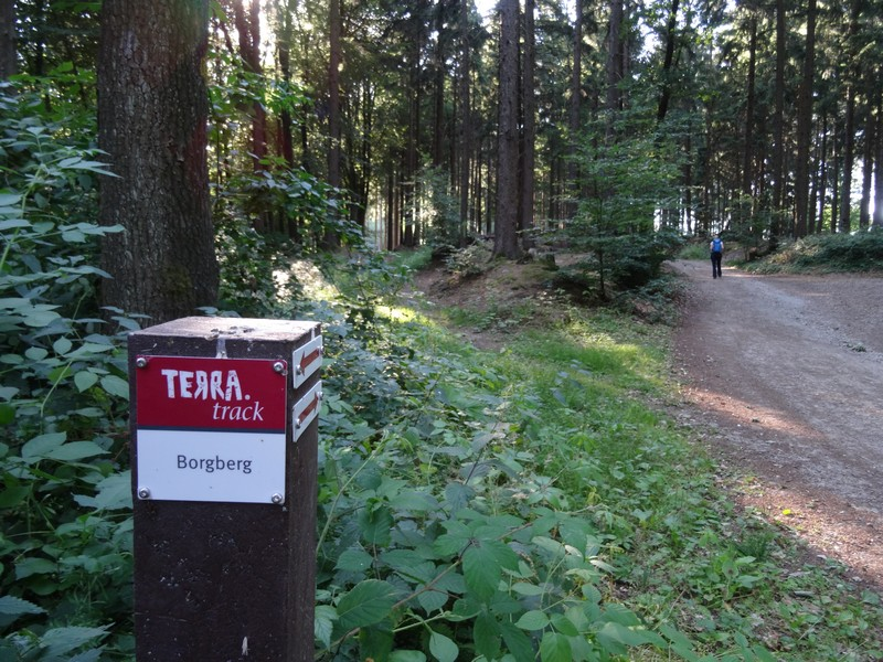 Die unverwechselbaren rotweißen Schilder weisen uns den Weg auf dem TERRA.track Borgberg.