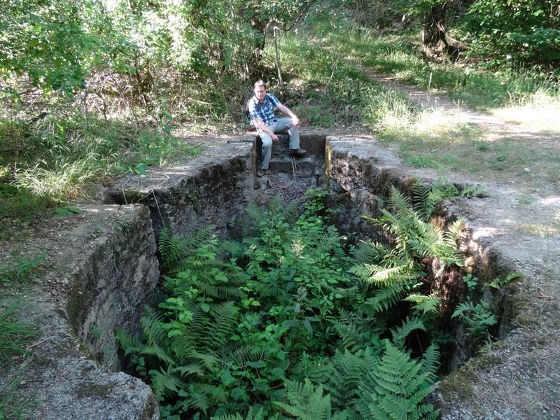 An der alten Verladestation am Silbersee erobert sich die Natur zurück, was ihr gehört.