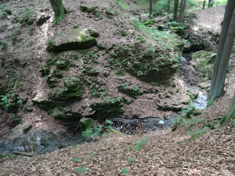 Vorbei am Liethenbach und der dazu gehörigen Mühle...