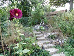 Der kleine hübsche Garten am Umweltbildungszentrum Noller Schlucht.