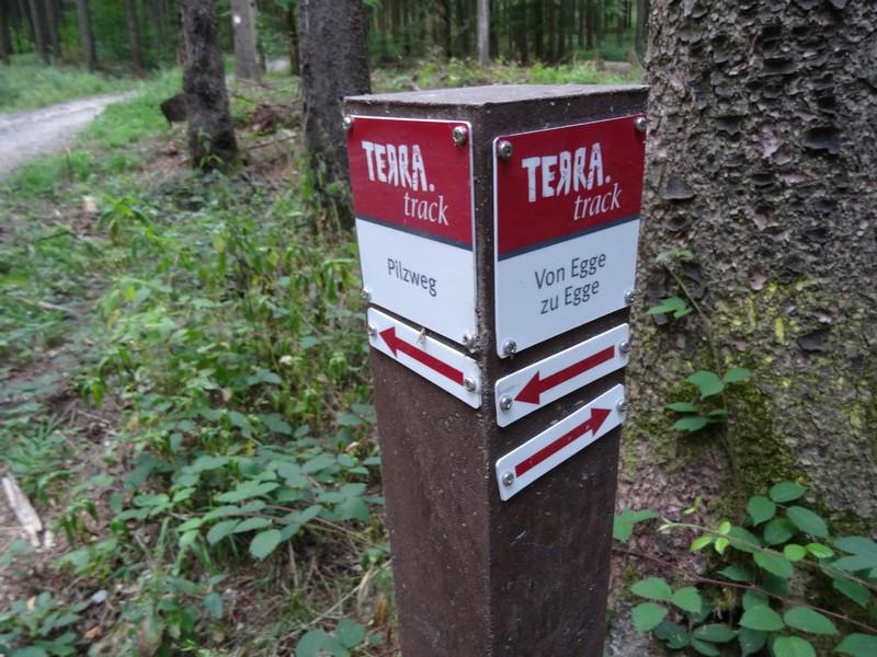 Einem zweiten TERRA.track begegnen wir unterwegs auch noch, dem rund drei Kilometer langen Pilzweg. Er begleitet uns sogar ein Stück