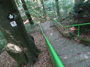 Über eine lange Treppe geht es hinab zum Breenbach.