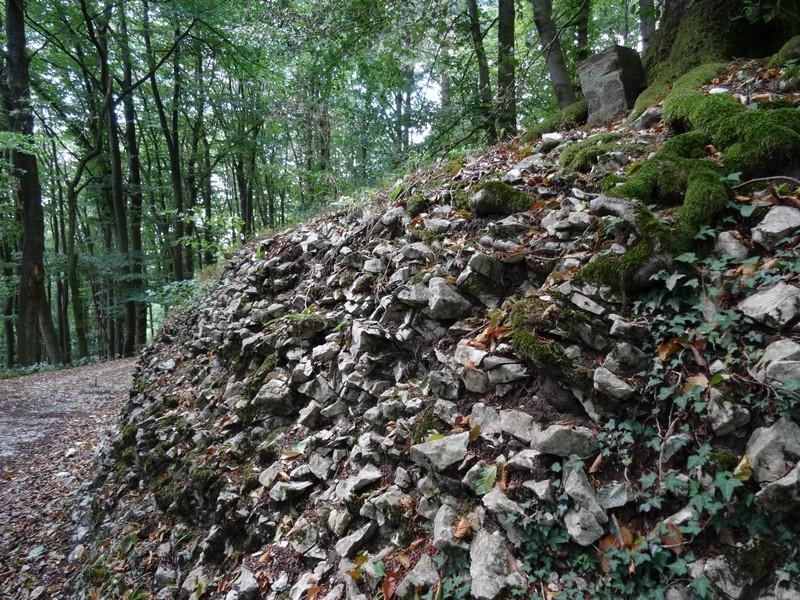 Am Fuße der Kalksteinklippen.