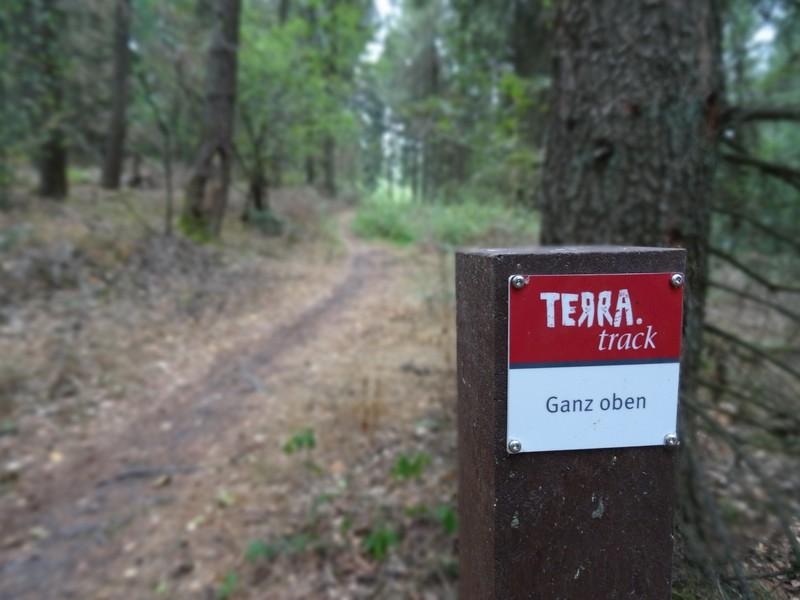 Ganz oben - der Name des TERRA.tracks in Georgsmarienhütte ist Programm. Wir wandern wirklich bis ganz nach oben!