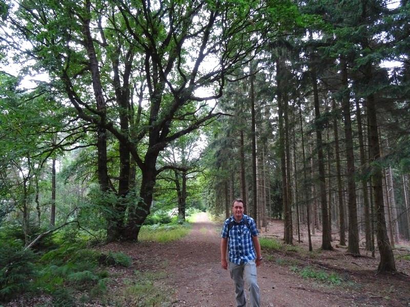 Über breite Forstwege geht es dann wieder ganz nach unten...