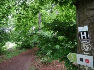 Ein kleines Stück folgen wir dem vertrauten Hermannsweg.