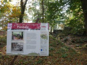 Eine umfangreiche Schautafel berichtet über die Geschichte der Felsen.