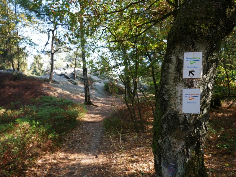 Durch die Bäume hindurch erblicken wir alsbald schon den Dreikaiserstuhl, den Namensgeber der Teutoschleife Dreikaiserstuhl.
