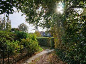 Ein kleines Pättken, wie man im Münsterland zu sagen pflegt, ist der Haselnussweg.