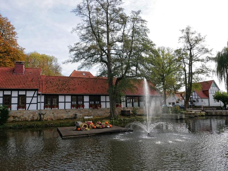 Umrahmt von Fachwerkhäusern nimmt uns der idyllische Dorfteich Brochterbecks in Empfang zum Start unserer Tour auf dem Teutoschleifchen Brochterbecker Landpartie.