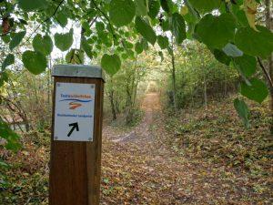 Die Brochterbecker Landpartie führt uns auf lauschigen kleinen Wegen aus dem Ortskern heraus.