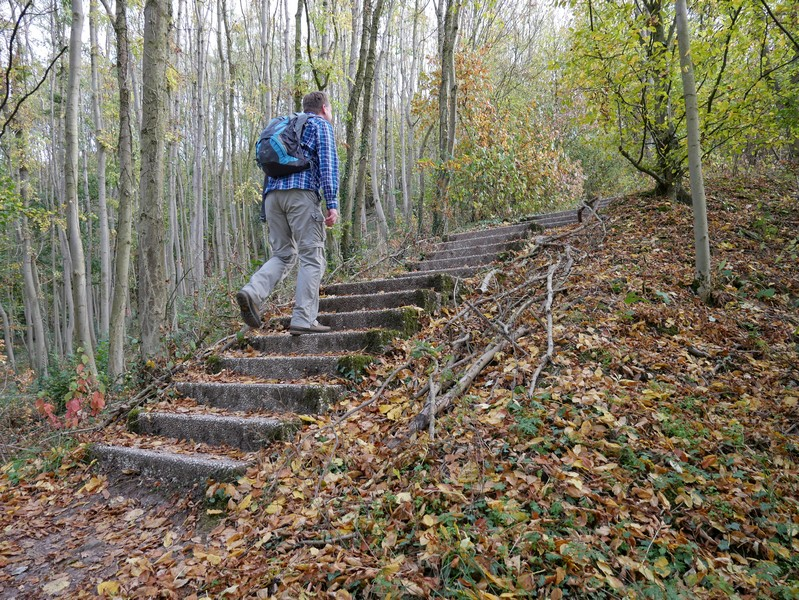 Über Treppen geht es aufwärts zum Münsterlandblick hoch über Brochterbeck.