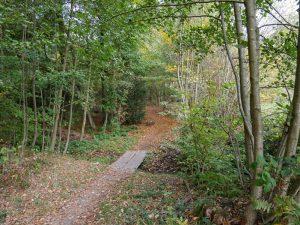 Enge, bildhübsche Wege bestimmen das Bild auf diesem Abschnitt der Brochterbecker Landpartie.