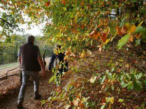 Der Panoramaweg erfreut sich freilich auch bei anderen Wanderern großer Beliebtheit.