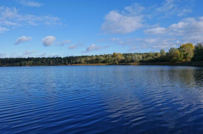 Der zweite Namensgeber der Sloopsteener Seerunde, der Niedringshaussee, ist unsere nächste Station.