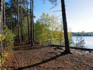 Dicht an den Ufern des Sees verläuft unser Weg.