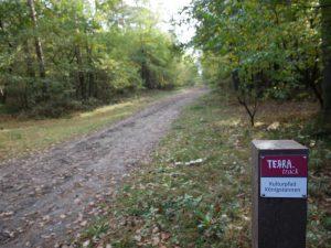 Knapp einen Kilometer geht es auf diesem Weg geradeaus.