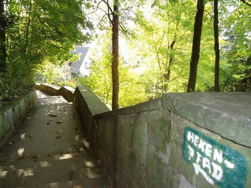 Über eine Treppe geht es zurück zur Straße Am Weingarten. Dem Weinberg begegnen wir hier nun auch noch...