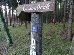 Bis nach Ossenbeck führt der Weg uns nicht, aber wir treffen sogar den Jakobsweg...