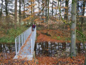 Hinter dieser Brücke entscheiden wir uns für eine Richtung des Rundwegs.
