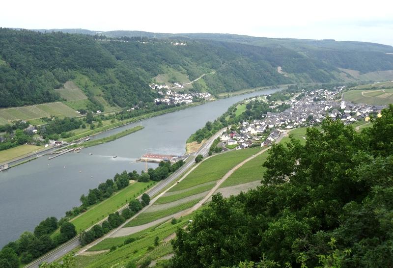 Blick vom Moselsteig auf Enkirch