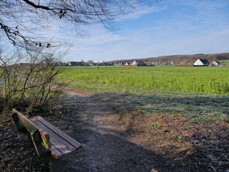 Ausblick vom Waldrand über ein Feld, im Hintergrund eine Siedlung