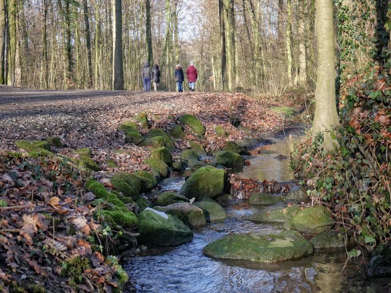 Bachlauf am Wegesrand des TERRA.tracks Wellengarten. Im Hintergrund mehrere Wanderer.