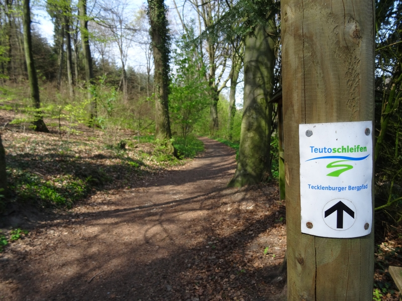 Schild der Teutoschleife Tecklenburger Bergpfad mit dem Weg im Hintergrund